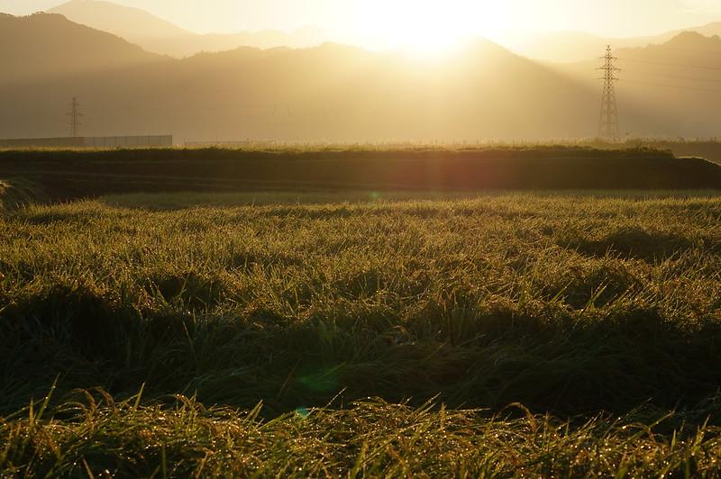 rising sun_201509