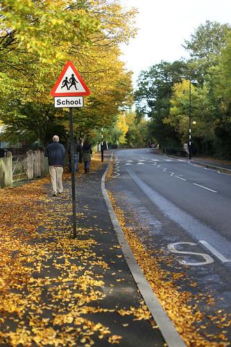 Leafy West Dulwich