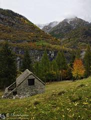Esigo e Alpe Brumei (Valle Devero - Piemonte)