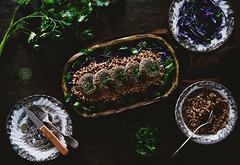 Vegan patties with wild mushrooms and green lentil…