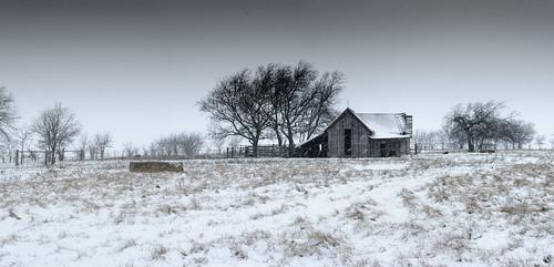 winter panorama snow texas farm