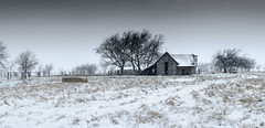 Prosper Farm in Snow