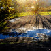 A sunshine in autumn by yukoka
