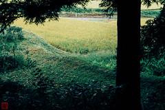 Photo:IMG_1621-19 By zunsanzunsan