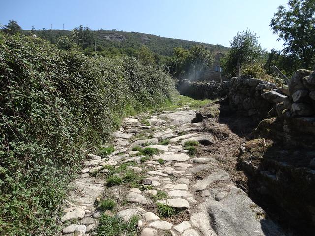 Camino en el Sendeiro dos Muíños do río Seixo e do Rego Cavadosa