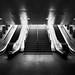 Glasgow Stairway by evalogan.com