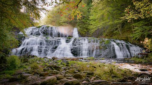 autumn mist leaves sunrise waterfall capebreton