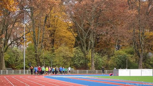 5km Testlauf 2016