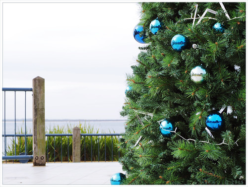 Cowes Christmas tree on the foreshore 2015