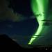 Illuminated by danielfj91