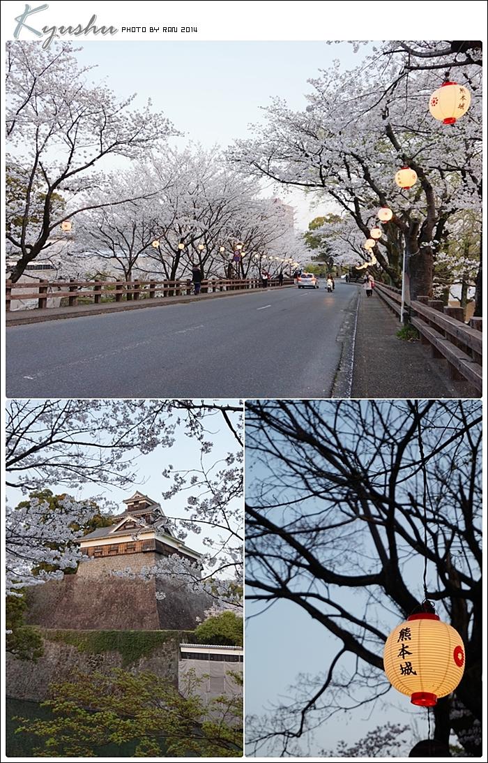 kyushu20140327046