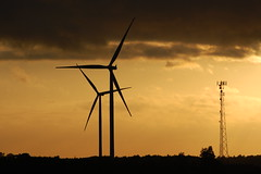 mill(0.0), machine(1.0), windmill(1.0), wind(1.0), wind farm(1.0), electricity(1.0), wind turbine(1.0),