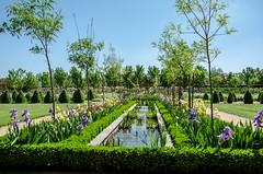 Water Garden, Alowyn Gardens