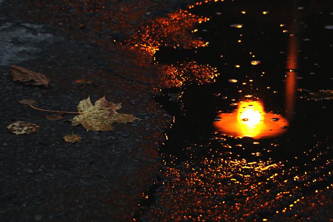 autumn 147