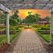 St Catharines Ontario ~ Canada ~  Montebello Park  ~ Rose Garden by Onasill ~ Bill Badzo