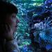 30102014-aquarium-5 by Chloé Kaufmann