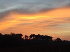 03.12.15 • sunset...derrière mon bureau, dos à la fenêtre, je n'ai pas vu le soleil aujourd'hui mais ce soir, le spectacle de son coucher était magnifique 🌅
