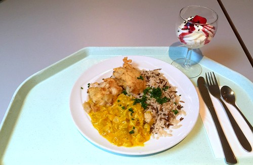Hoki filet with fennel in saffron sauce & rice / Hokifilet mit Fenchel in Safransauce & Wildreis-Mix