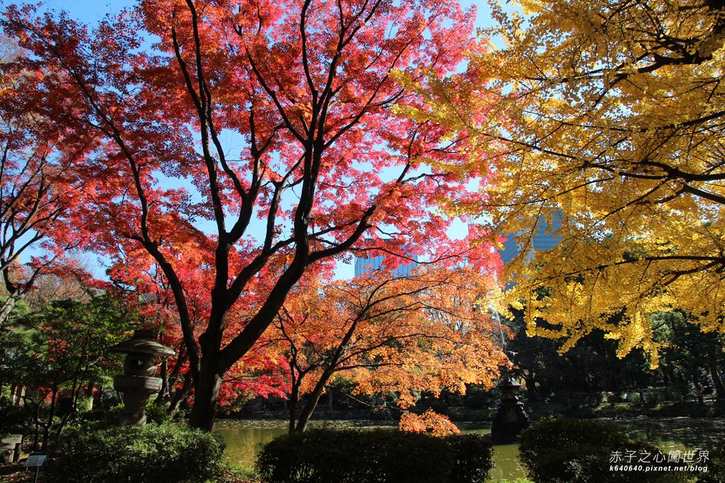 東京賞楓-日比谷公園05