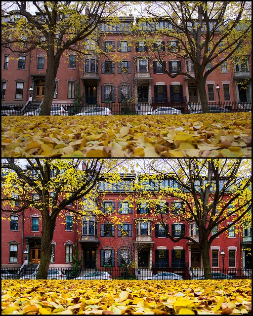 Before And After Lightroom