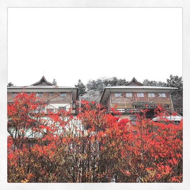 Photo:「ジブリに出て来そう」 土小屋でUターン。 小屋といっても大きい建物です。 こんな山の上にお店があって平日の寒い中人がそこそこ来てるのにびっくり。 #土小屋 #石鎚山  #ドライブ #紅葉 By kaidouminato