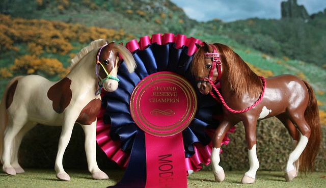Archie and Kestral - Reserve to Reserve Champions