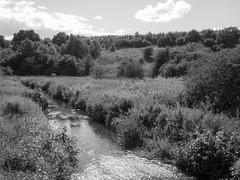 River Browney at Bearpark