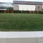 contemplation lawn
