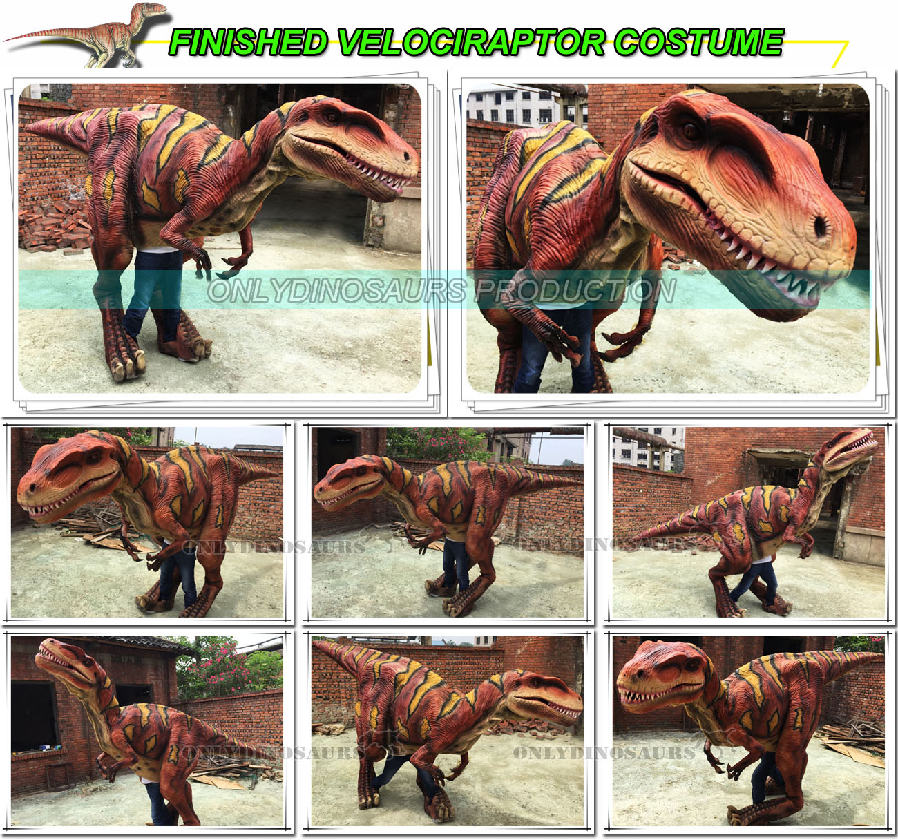 Finished VelociRaptor Costume