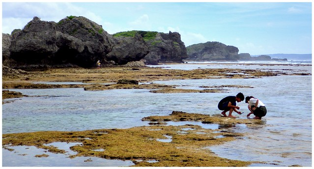 YOUNG TOURIST COUPLE DISCOVERNG SEA LIFE DURING A LOW TIDE ALONG THE EAST CHINA SEA