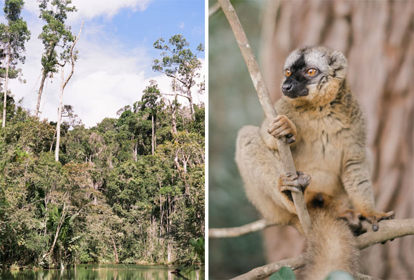 RYALE_Madagascar_Blog2_011