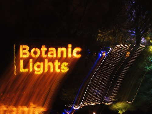 Botanic Lights (39)