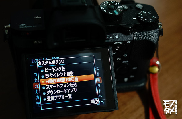 DSC09334.jpg