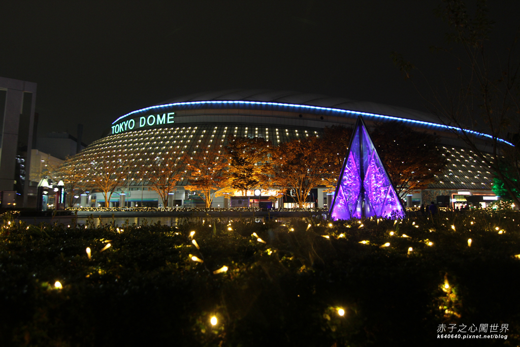 Tokyo Winter Illuminations- Tokyo Dome City-IMG_0590029