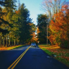 On the road again...  #autumninnewyork #roadtrip #autumn #fall #instagood
