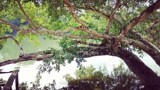 Featured medium photo of Santa Elena on TripHappy's travel guide