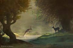 Fairy Tale Fall