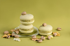 pistachio macaroon on a green background