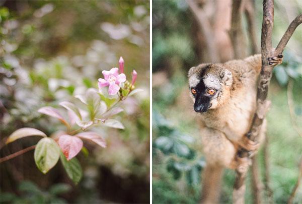 RYALE_Madagascar_Blog1_011