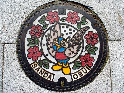 Sanda Hyogo, manhole cover (兵庫県三田市のマンホール)