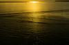 20150807-11_Golden Light at Sunrise