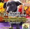Thank you to our supporters, volunteers, followers, donors, fosters, and adopters! Happy Thanksgiving!
