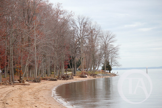 Leesylvania-State-Park-Beach-1