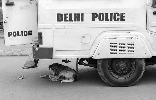 Safe and cool. Delhi, India