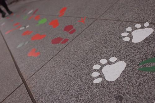 foot steps with JENKKA
