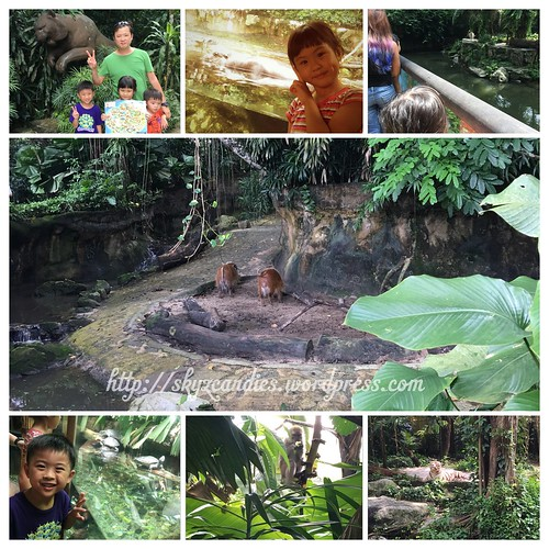 Zoological Gardens