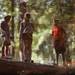camping trip by lauren {elycerose}