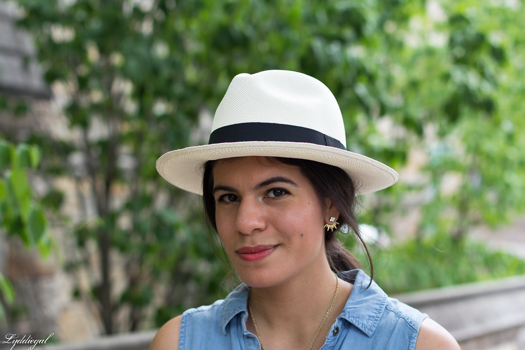 chambray dress, panama hat, leather tote-4.jpg