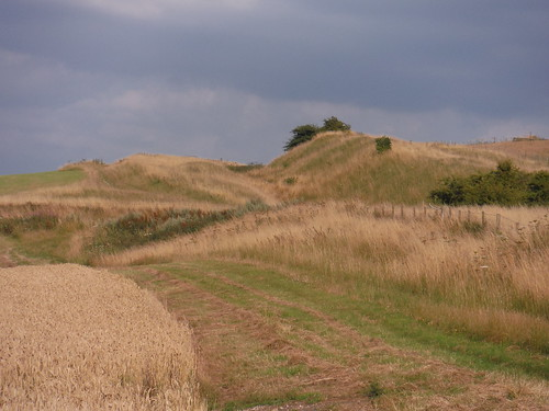 The Wansdyke ditch and bank