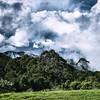 27SEP15 Mount Glorious - Queensland, Australia